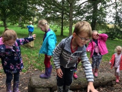Yorkshire Arboretum (13)