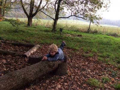 Yorkshire Arboretum (14)