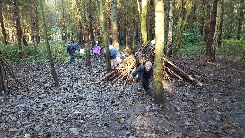 Y4 in the Woods (2).jpg