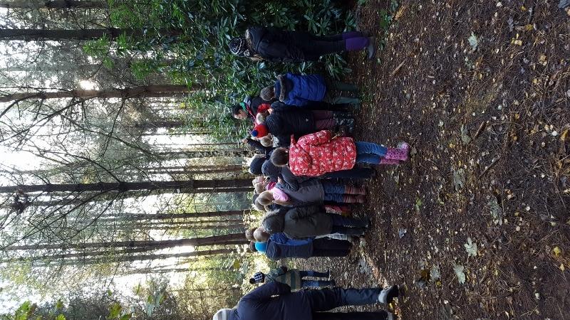 Y4 in the Woods (6).jpg