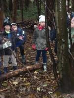 woodland adventures 009 (800x600).jpg