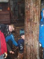 woodland adventures 013 (800x600).jpg
