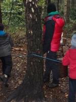 woodland adventures 035 (800x600).jpg