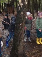 woodland adventures 042 (800x600).jpg