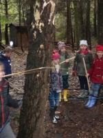 woodland adventures 044 (800x600).jpg