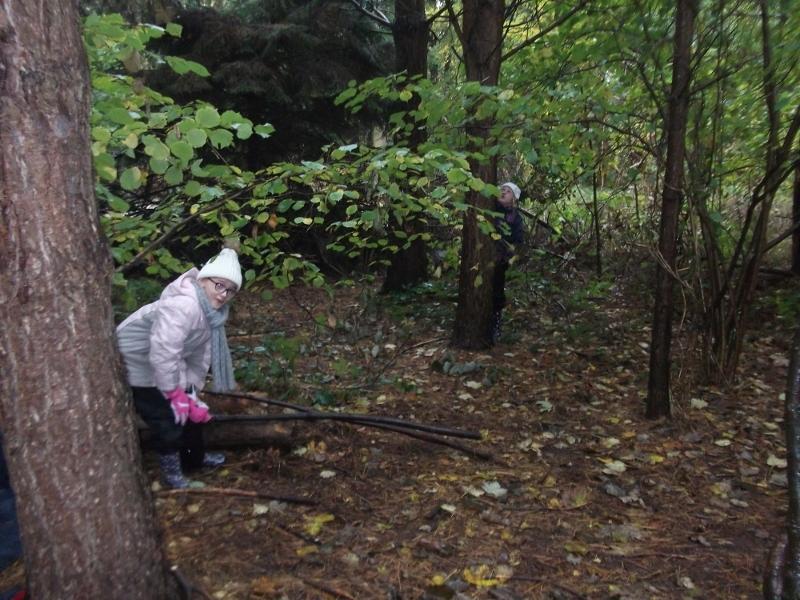 woodland adventures 016 (800x600).jpg