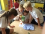 Year 6 Scientists